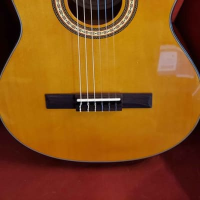 Corbin CWGC39CE With Active 4-Band EQ Acoustic Electric Guitar for sale