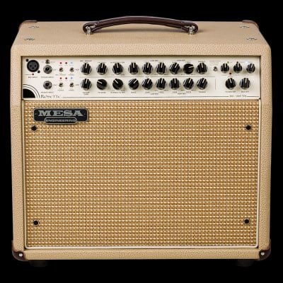 "Mesa Boogie Rosette 300/One:Ten 2-Channel 300-Watt 1x10"" Acoustic Guitar Combo"