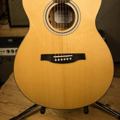 Paul Reed Smith PRS 2018 Tonare SE TX20E Acoustic - B02261 for sale