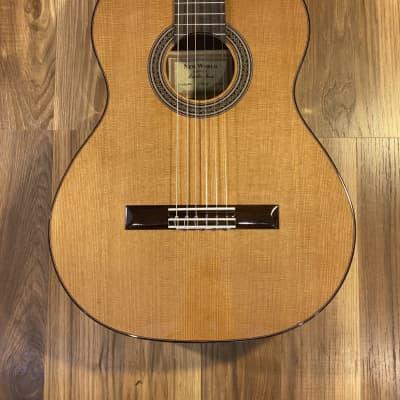 New World Guitars Estudio E650C for sale