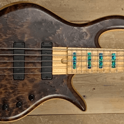 Elrick Gold Series 5 String for sale