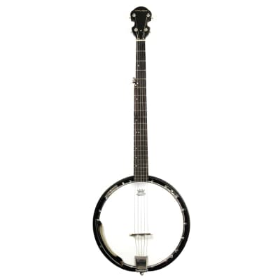 Trinity River Trinity River Prairie Star Full Size Banjo PRB200  W/ carrying bag for sale