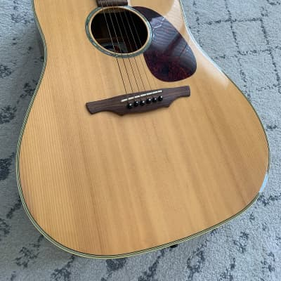 Alvarez Professional 5031 Acoustic Guitar with Gator Soft Case for sale