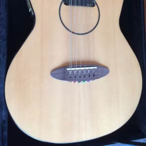 Carruthers 12 String acoustic - electric for sale