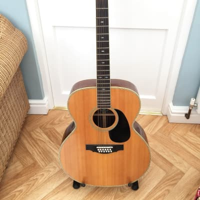 Dave Gregory 12 String Acoustic for sale