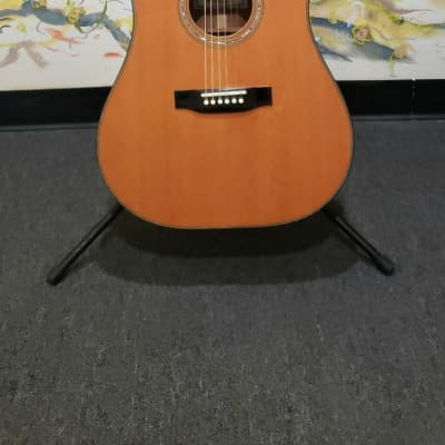 1990s Harvey Leach F29 Acoustic Guitar w/ Hard Case for sale