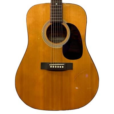 Grant W100 Dreadnought Acoustic Guitar for sale