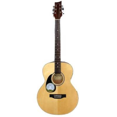 Beaver Creek 101 Series Folk Acoustic Left handed w/Bag BCTF101L for sale
