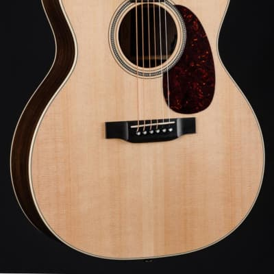 Martin GPC-16E Indian Rosewood and Sitka Spruce NEW