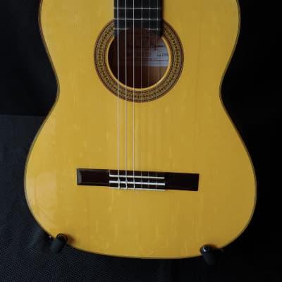2020 Darren Hippner Media Luna Cypress and Spruce Flamenco Guitar