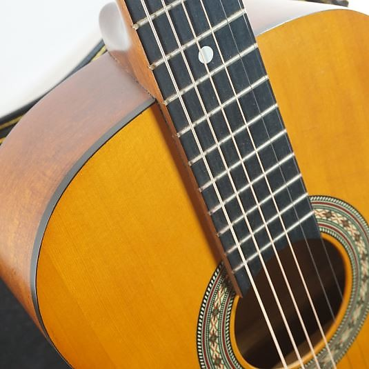 Lotus Acoustic Guitar : lotus amigo am30 acoustic guitar wood reverb ~ Russianpoet.info Haus und Dekorationen