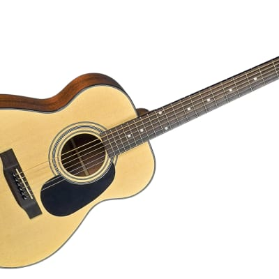 Bristol BB -16 Baby Bristol Acoustic Guitar by Blueridge With Gig Bag for sale