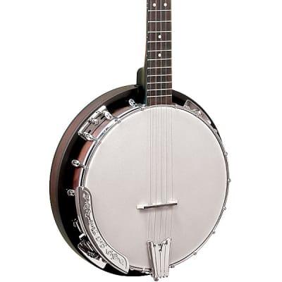 Gold Tone CC-BG Beginners Bluegrass Cripple Creek Banjo Starter Package w/Gig Bag