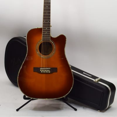 Zager Easy Play ZAD-900CE-12 12-String Acoustic/Electric Guitar for sale