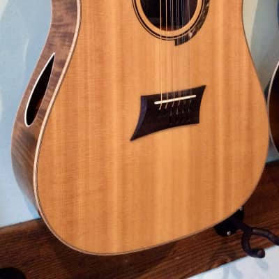 Michael Kelly Triad 10E Ten String w/Fishman Sonitone Pick up for sale