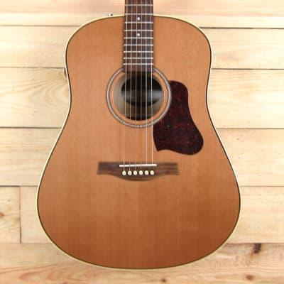 Seagull Coastline Momentum Acoustic Electric Guitar w/High Gloss Finish