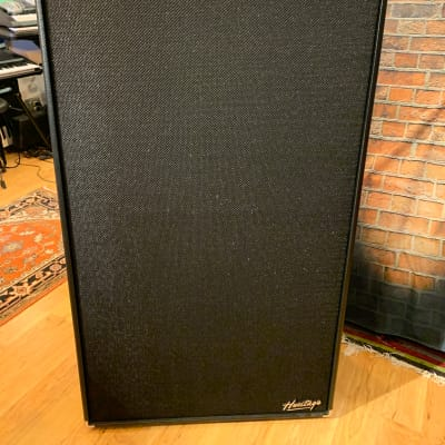 Ampeg Heritage SVT-810E With Cover