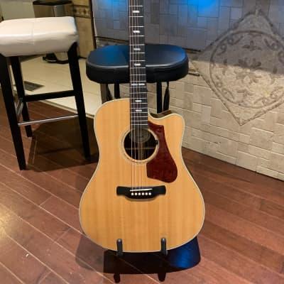 Gibson Hummingbird Rosewood M (Avant Garde AG) 2018 - 2019