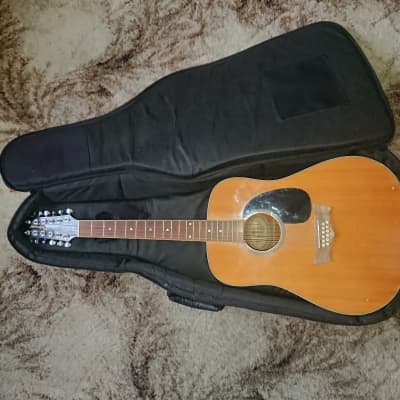 Briarwood  12 string acoustic  Acoustic with gig bag for sale