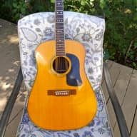 Washburn D-29 s/n 1988 rosewood, beautiful tone! for sale
