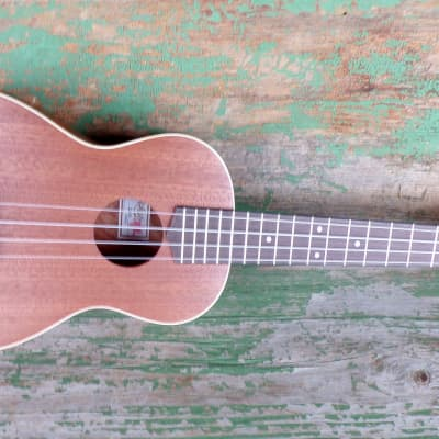 Koloa KU-12 Concert Ukulele Natural Mahogany for sale