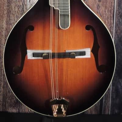 Washburn TCMA43SWK-LTD Timeless Mandolin for sale