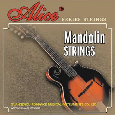 AM04 Mandolin Strings, 10-34, Alice