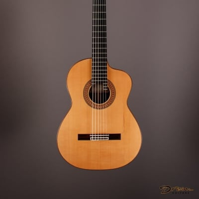 2004 Ruck Flamenco Negra, Indian Rosewood/Spruce for sale