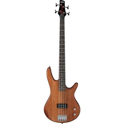 Ibanez Gio SR GSR100EX 4 String Electric Bass Guitar, 22 Frets, Bolt-On Neck, Rosewood Fretboard, Satin Polyurethane, Mahogany Oil