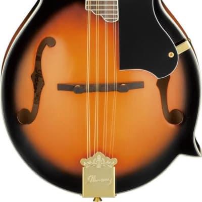 Ibanez M522SBS F Style Acoustic Mandolin - Brown Sunburst for sale