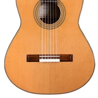 Oscar Trezzini 2021 Classical Guitar Cedar/CSA Rosewood for sale