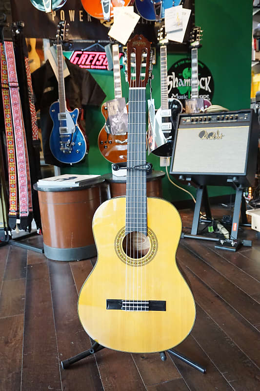 Fine New Washburn C40 Acoustic Classical Guitar Gig Bag Stand Foot Stool Tuner Ocoug Best Dining Table And Chair Ideas Images Ocougorg