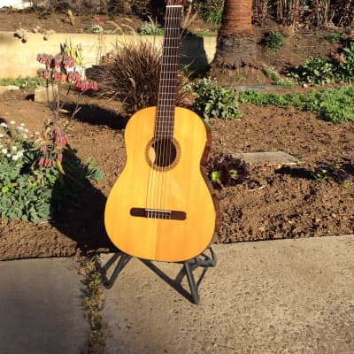 Martin N-10 1971 for sale