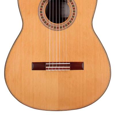 Manoli Flouras 2013 Classical Guitar Cedar/Cocobolo for sale