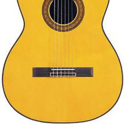Takamine TC132SC Classical Series Acoustic/Electric Nylon String Guitar with Cutaway