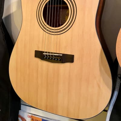 Cort Guitars Acoustic Dreadnought Guitar Pack EARTH-PACK-OP *Store Demo* for sale