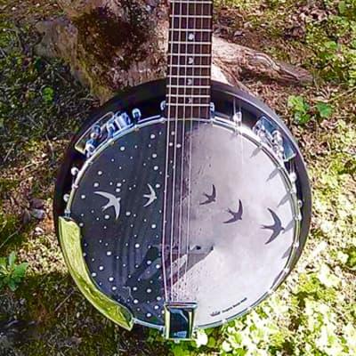Luna Moonbird 2018 Moonbird Graphic banjo face for sale