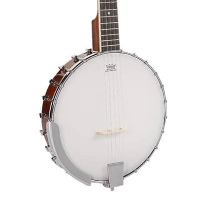 Richwood Master Series RMB-405 open back 5-string folk banjo for sale