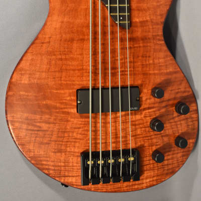 Bolin 5-String Bass Guitar Model NS-5 with Case, Beautiful! for sale