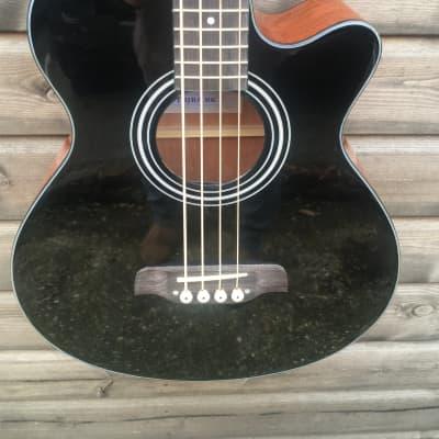 Brunswick TBJBA BK Electro Acoustic Bass Guitar for sale