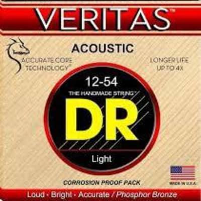 DR Veritas Acoustic Guitar Strings, Light, .012-.054