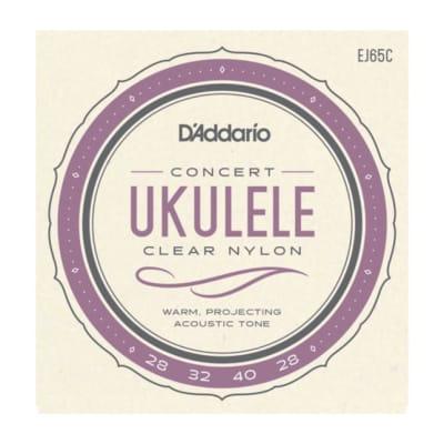 D'Addario EJ65C Pro-Arté Custom Extruded Ukulele, Concert
