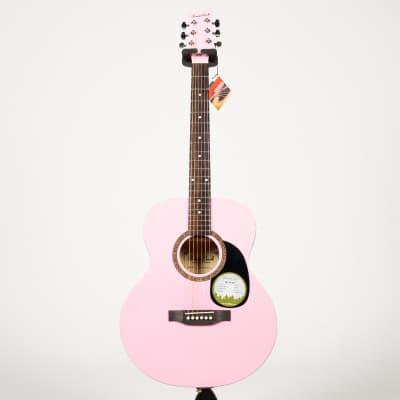 Beaver Creek BCTF101PK Folk Acoustic Guitar BCTF101 PK (Pink) for sale