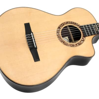 Taylor Jason Mraz Signature Model Nylon Acoustic Electric for sale