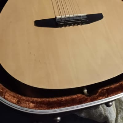 Rogue RAG-NA Natural Finish With Strings and a Case