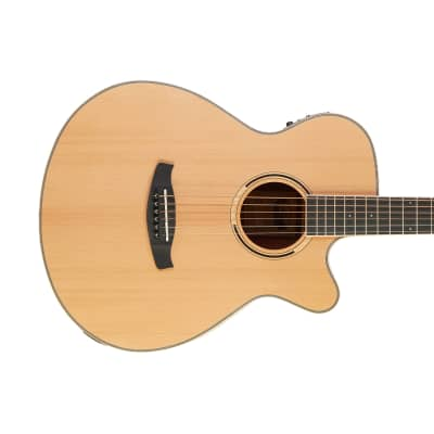 Tanglewood Discovery DBT SFCE OV for sale