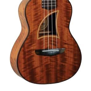 Eddy Finn All Koa Concert Size Ukulele for sale