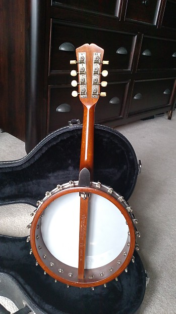 Vega Mandolin Banjo Serial Numbers - pointslittle