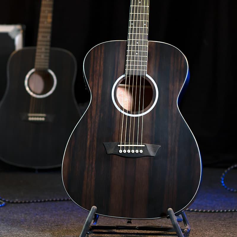 Washburn Deep Forest Ebony FE Acoustic Electric Guitar
