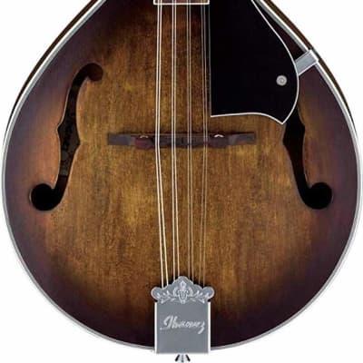 Ibanez M510OVS Spruce / Sapele Open Pore A-Style Mandolin